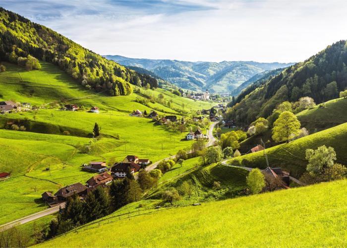 Foresta Nera, Alsazia e Svizzera