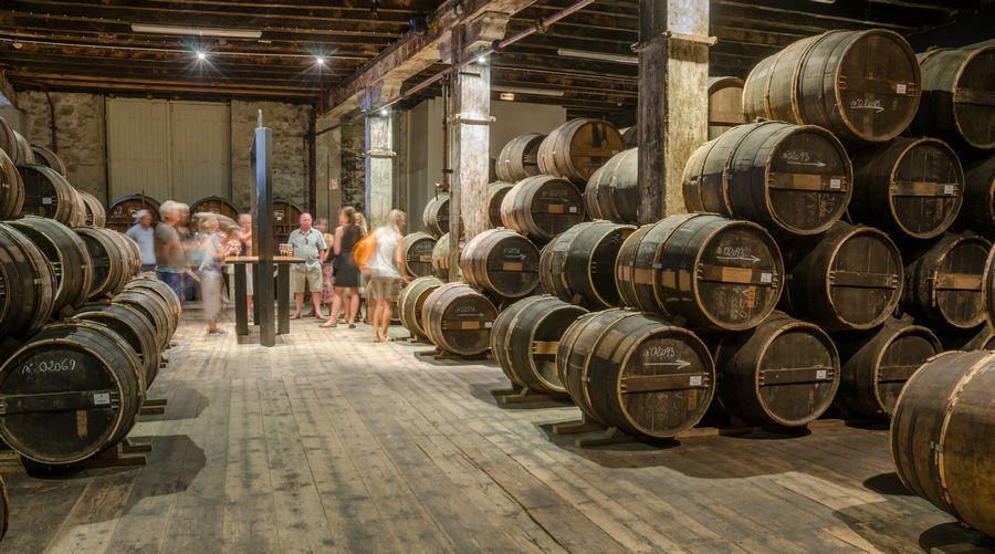 Distilleria di Cognac