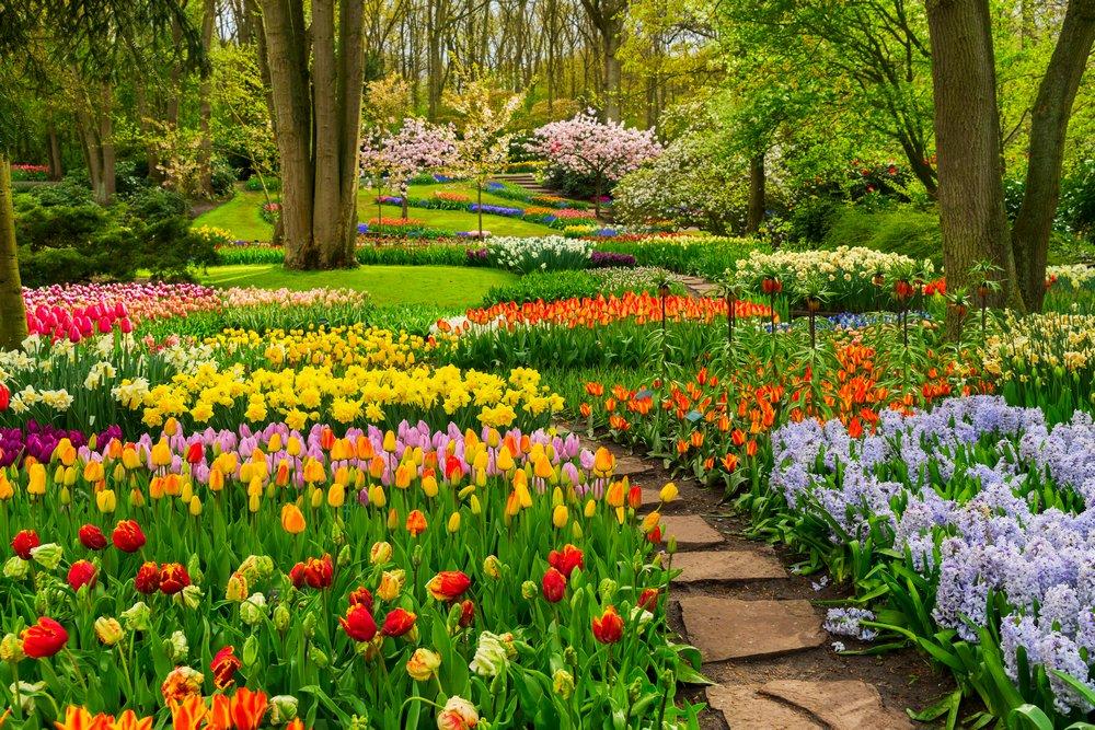Il Parco Floreale di Keukenhof